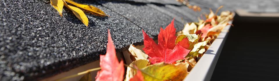 Dakgoot verstopt met bladeren
